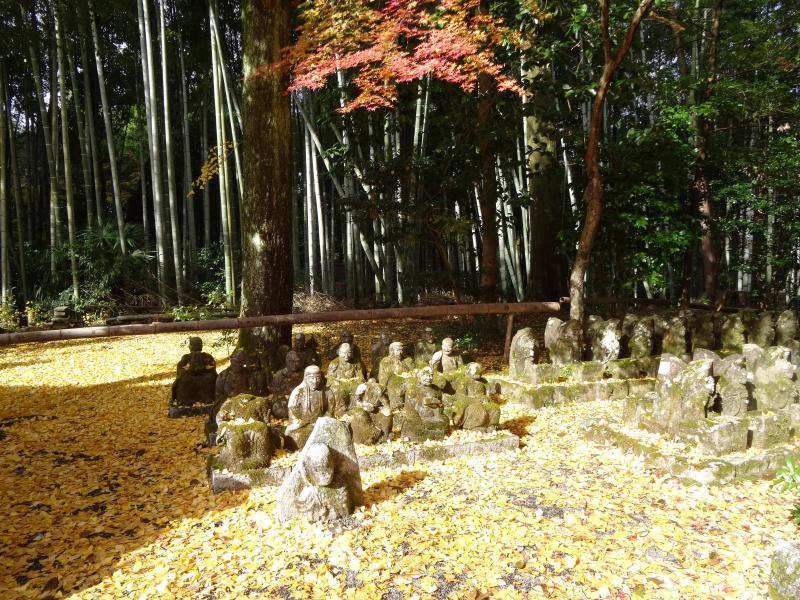 赤山禅院10