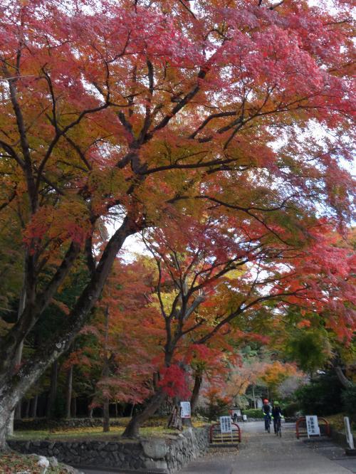 鷺森神社2