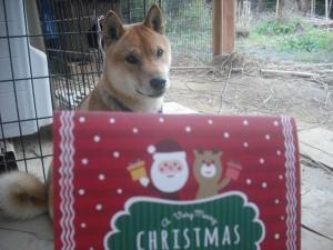 171221クリスマスカードとサブ3