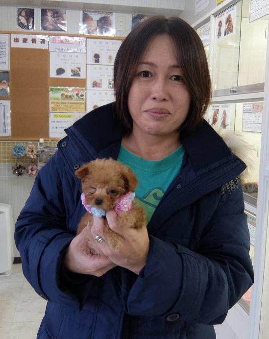 松井愛子 コロンの子 マイクロサイズ (2)