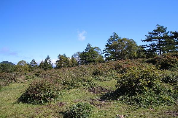 17湯ノ丸山13