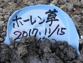 畑畝・野菜5