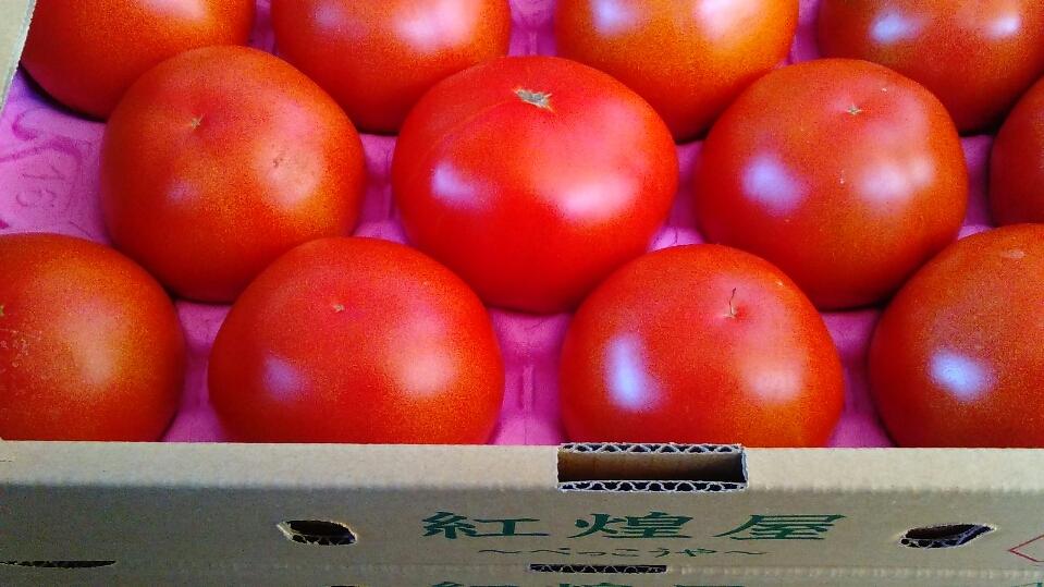 1202トマト