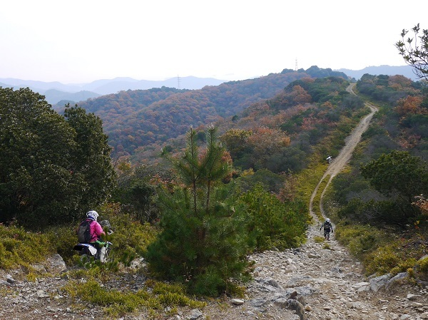 テラノ坂のテマエの坂ツー1711-001b