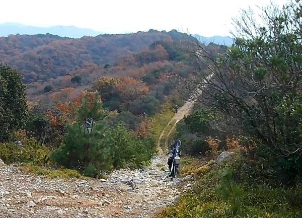テラノ坂のテマエの坂ツー1711-022b