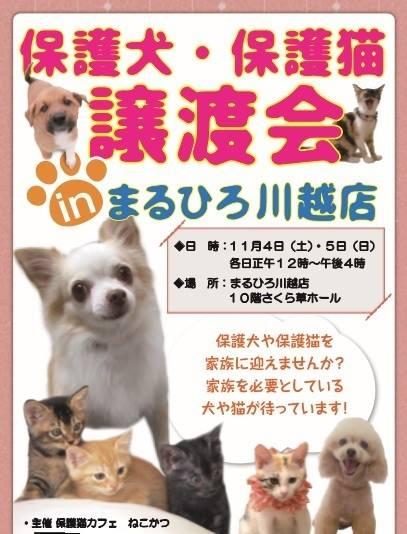 201711丸広百貨店譲渡会