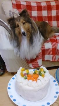 しずく2歳誕生日