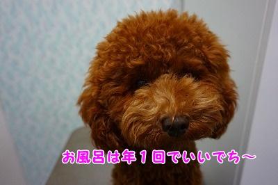 s-DSC01880.jpg