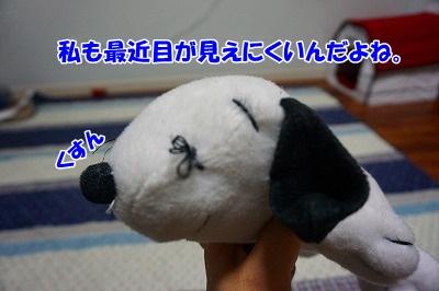 s-DSC02098.jpg