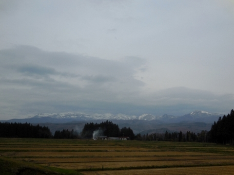 冬天的天空