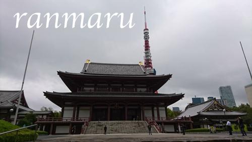 まるちゃん2017110203