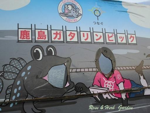 道の駅鹿島20171207 (1)