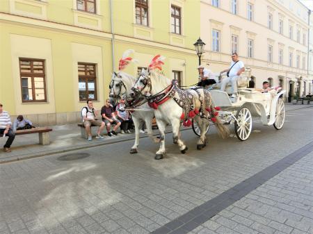 クラクフの馬車1