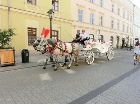 クラクフの馬車3