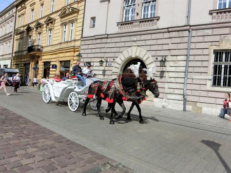 クラクフの馬車2