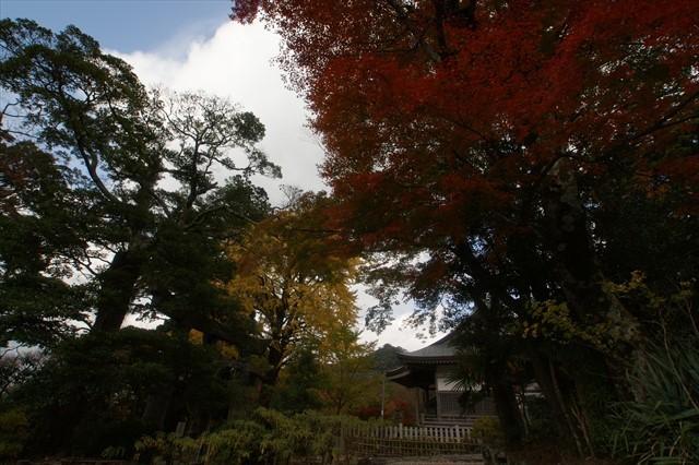 英彦山神社 紅葉-4