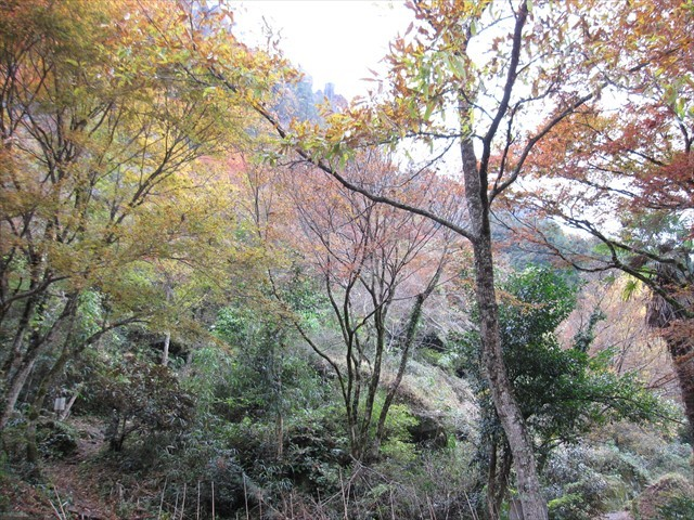 耶馬渓の紅葉-4