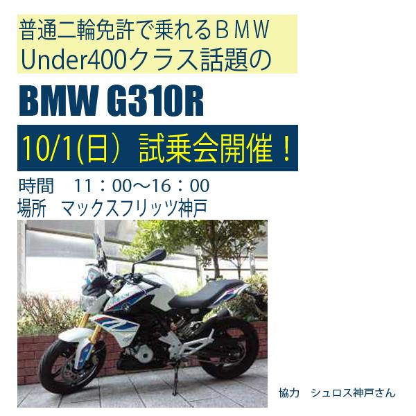 G310R1001sun.jpg