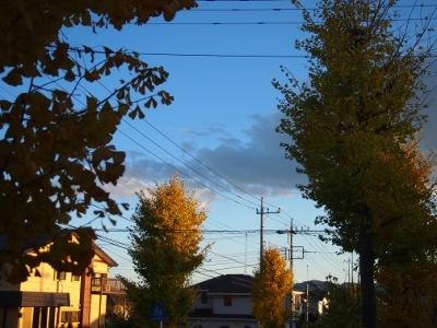 写真2640(№449)1