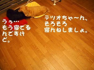 写真4652(№451)1