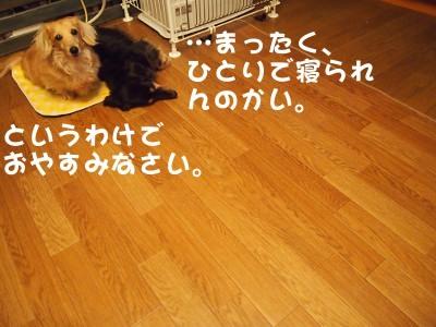 写真4653(№451)1