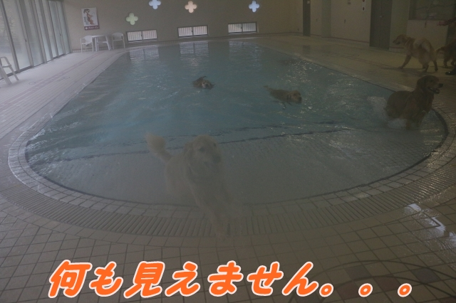 IMG_7409-14.jpg