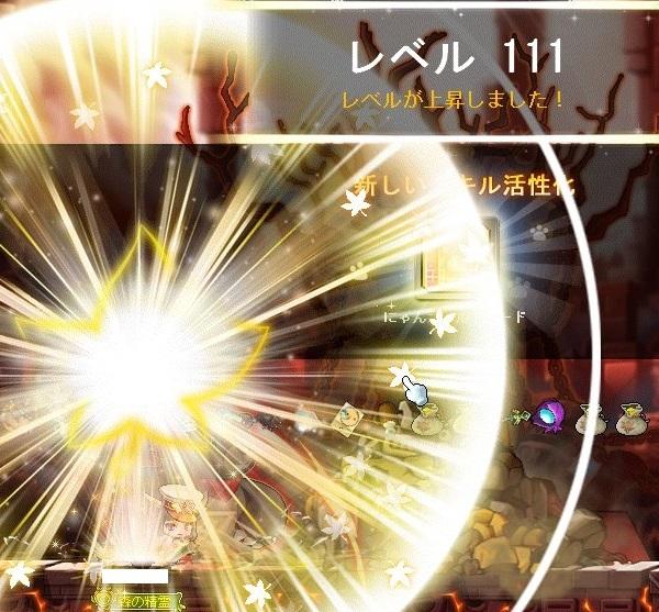 Maple_A_170927_171213.jpg