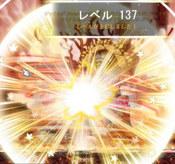 Maple_A_171003_002158(2).jpg