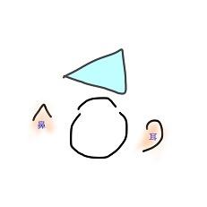 プリズム (5)