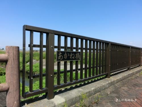 旧日本煉瓦製造株式会社 専用線跡 #2_03