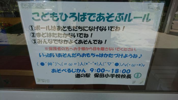 道の駅・保田小学校9