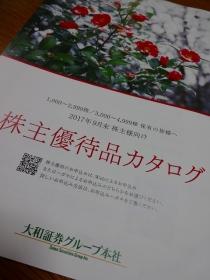 DSC07833.jpg