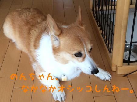 011_convert_20171127113218.jpg