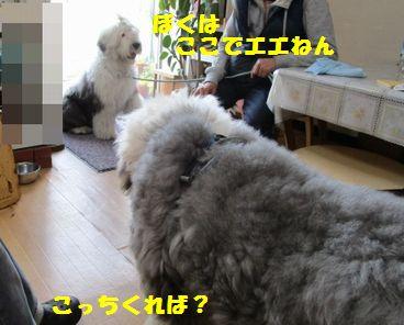 IMG_2846.jpg