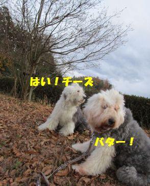 IMG_2874.jpg