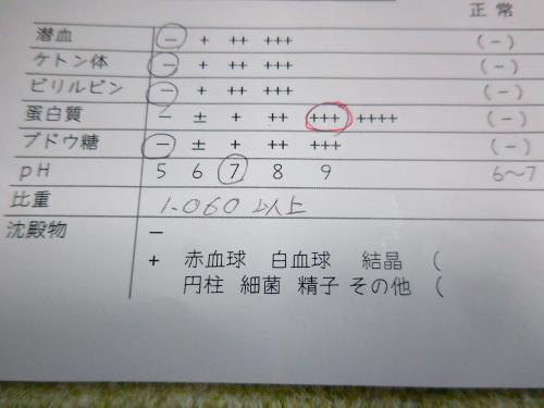 くぅ尿検査11月