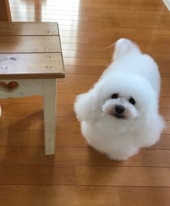 minamiママ