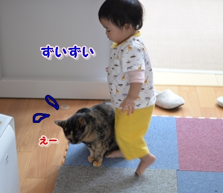 DSC_6069.jpg
