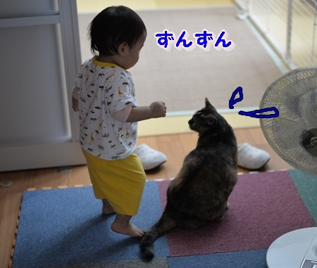 DSC_6071.jpg
