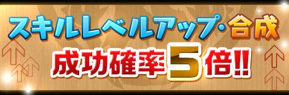 skill_seikou5x_201710061510479d5.jpg