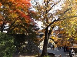 20171103上田城7