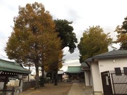 20171111野崎八幡9