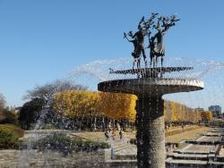 20171124昭和記念公園5