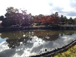 20171124昭和記念公園45