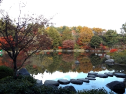 20171124昭和記念公園49