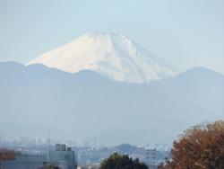 20171125三鷹富士山3