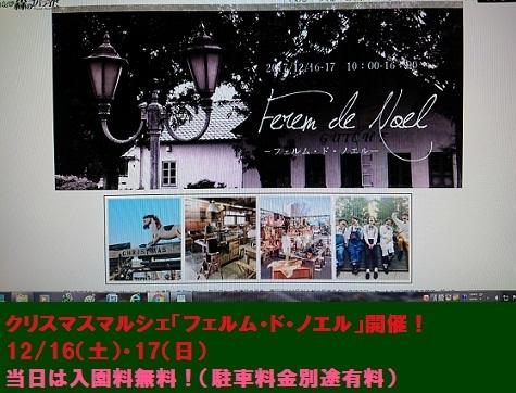 DSC_0019_2017121422052846f.jpg