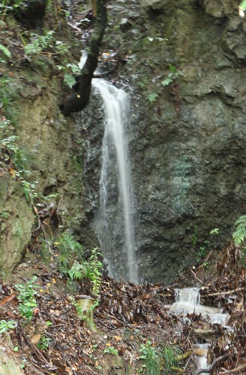 雨の日の滝 爺神山 29 10 21