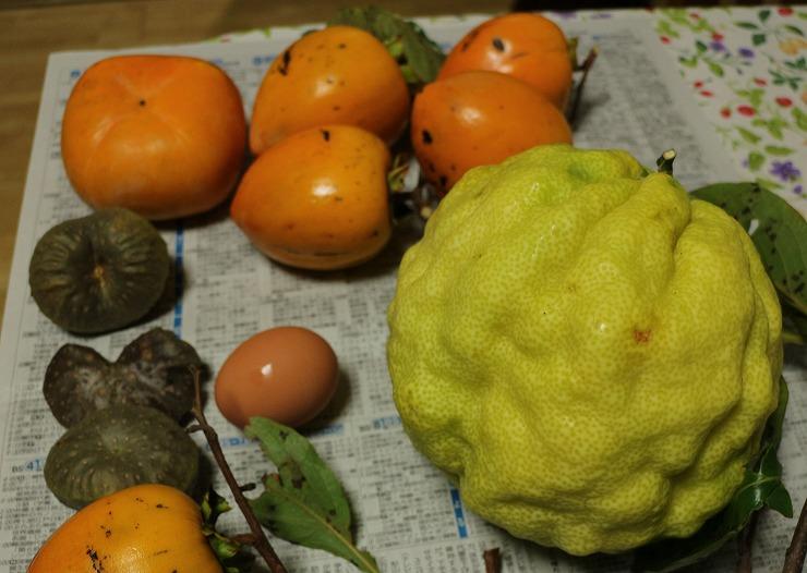 大きな柚子 29 10 27