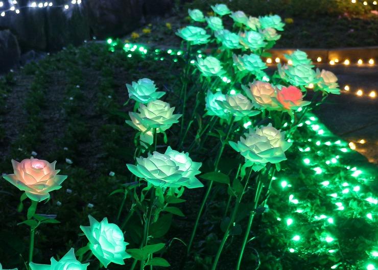 薔薇の花もライトアップ 29 12 25